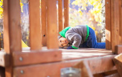 Barn som leker med den fallna hösten, låter vara i park Royaltyfri Bild