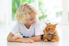 Barn som matar den hem- katten Ungar och husdjur royaltyfri foto