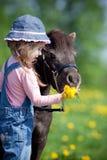 Barn som matar en liten häst i fält Arkivbild