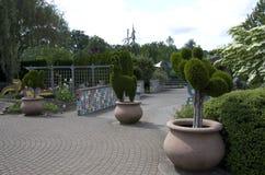 Barn som är trädgårds- i den Oregon trädgården Arkivfoton