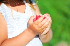 Barn som rymmer det smakliga hallonet Royaltyfria Foton