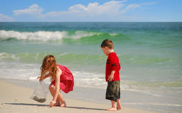 barn som samlar snäckskal Royaltyfri Foto