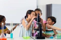 Barn som ser i mikroskop royaltyfria bilder