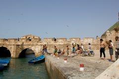 Barn som simmar i porten av Essaouira Royaltyfria Bilder