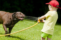 Barn som spelar att kyla för hundvatten Arkivbilder