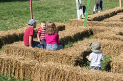 Barn som spelar i en labyrint Royaltyfria Bilder