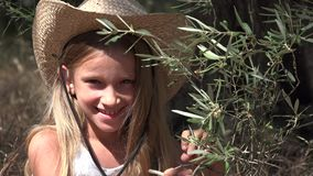 Barn som spelar i Olive Orchard Studying Fruits, bonde Little Girl vid trädet 4K lager videofilmer
