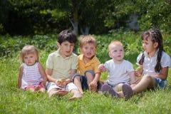 Barn som spelar i parkera Royaltyfri Foto