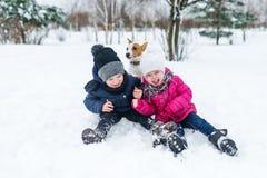 Barn som spelar med den Jack Russell terriervalpen i, parkerar i vintern i snön arkivfoto