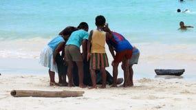 Barn som står runt om fotograf royaltyfria bilder