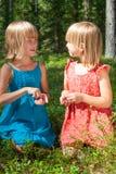 Barn som väljer bär i en sommarskog fotografering för bildbyråer