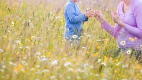 Barn som väljer blommor på en äng arkivbild