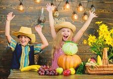 Barn spelar grönsakträbakgrund Hatten för kläder för ungeflickapojken firar lantlig stil för tacksägelsefest Elementärt royaltyfri bild