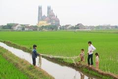 Barn spelar i risfältfältet i bygden av norden av Vietnam Arkivfoton