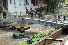 Barn spelar på floden Royaltyfri Bild