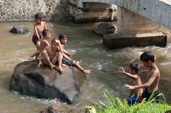 Barn spelar på floden Arkivfoto