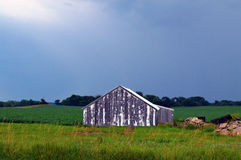 Barn After The Storm. This barn wet from a recent rain displayed deep contrast. The ray of Sun light gave hint that the storm was over and the weathering drying Royalty Free Stock Photo