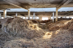 Barn with straw Royalty Free Stock Image