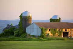 Barn at Sunset. Ivy-covered, vintage silos and barn with low sun illumination.  Misty mountains rise in the background, verdant field in the foreground Stock Images