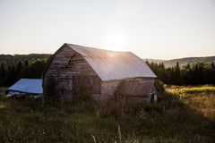 Barn Surrounded by Green Grasses Royalty Free Stock Image