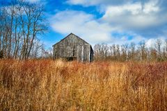 Barn in Tall Grass with Blue Sky and Clouds