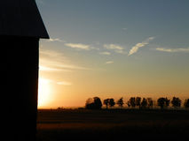 Barn and tree hedgerow outlined in front of setting sun Royalty Free Stock Photo
