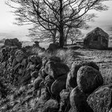 Barn Trees Wall Black and White. The Roaches Staffordshire Royalty Free Stock Image