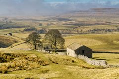 An  barn and trees in The Yorkshire Dales. Royalty Free Stock Photos