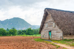 Barn used for curing tobacco in Cuba Stock Images
