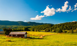 Barn and view of the Shenandoah River in the Shenandoah Valley, Royalty Free Stock Image