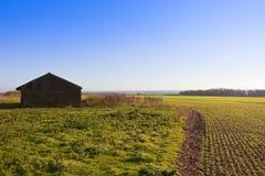 Barn and wheat crop Stock Photos