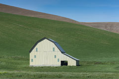Barn in the Wheat Fields. A classic barn set amid the wheat fields of eastern Washington state. The palouse area boasts a number of vintage barns in the deeply Stock Photo