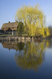 Barn and Willow Tree on Pond Stock Images