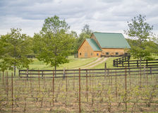 Barn at wine vinyard Royalty Free Stock Images
