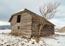 Barn in the winter Royalty Free Stock Images