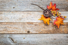 Barn wood  background with fall decoration Stock Photo