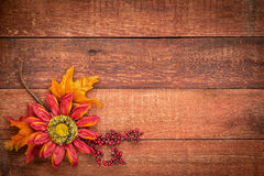 Barn wood  background with fall decoration Royalty Free Stock Images