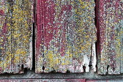 Barn wood. Old weathered and decaying barn wood on an old abandoned homestead royalty free stock images