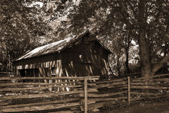 Barn in the woods Royalty Free Stock Image