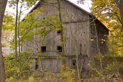BArn in the woods Royalty Free Stock Photos