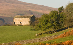 Barn in Yorkshire Dales. UK Stock Images