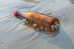 Barnacle catch bottle Stock Images