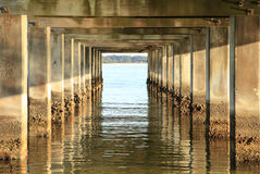 Barnacle Covered Pillars of an Qcean Fishing Pier Stock Photography