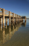 Barnacle Covered Pillars of an Qcean Fishing Pier Reflected in t Stock Image