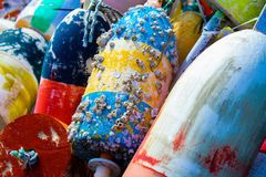 Barnacles on Buoys. Royalty Free Stock Photos