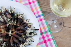 Barnacles and wine stock photos
