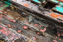 Barnacles on wooden wreckage boat. Piece of wreckage boat in the sea, barnacles on wooden boat Royalty Free Stock Images