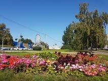 Barnaul i sommaren Arkivfoto