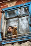 A girl with a dog in a poor quarter looking out the window of an old house stock photography