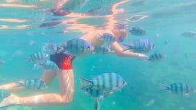 Barnbad i havet med fisken Dykapparatdykning i maskeringar Royaltyfri Bild
